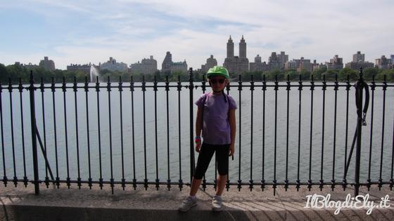 central park organizzare un viaggio a new york