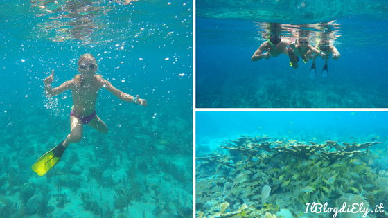 barriera corallina playa ancon trinidad